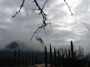 Sedona raindrop